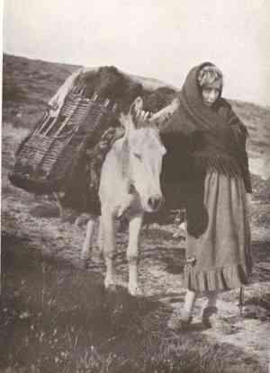 Girl from Kerry leading a donkey