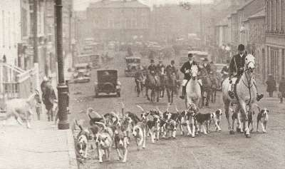 The Westmeath hounds in Mullingar, County Westmeath.